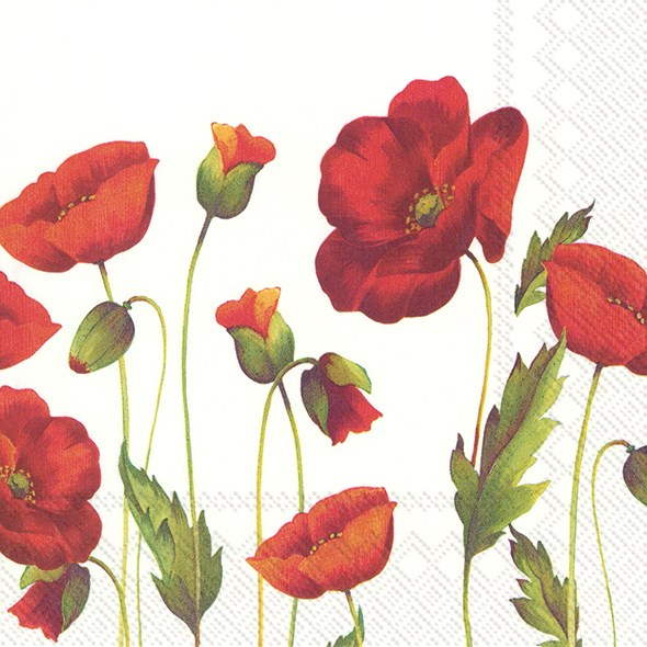 Luncheon Poppy  Napkins