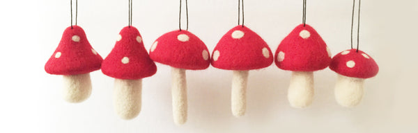 Red Topped Mushroom  and Woolen Branches