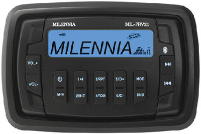 AM/FM/USB Multimedia Bluetooth<sup>&reg;</sup> Stereo