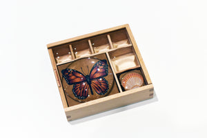 Mini Museum Wooden Box