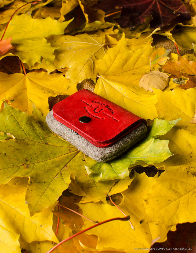Wool Felt Cardholder & Coin Purse | Autumn Red