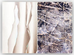 Caroyl La Barge - Abstract Nature Diptych