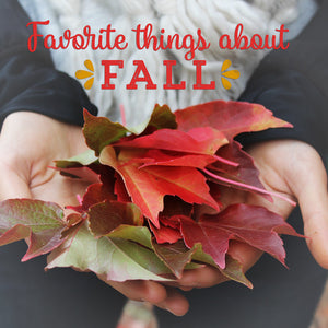 My Favorite Things About Fall