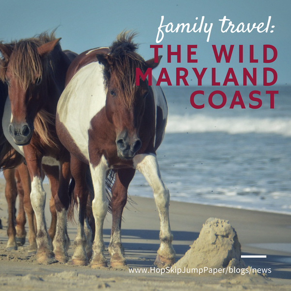 Family Travel: The Wild Side of Coastal Maryland
