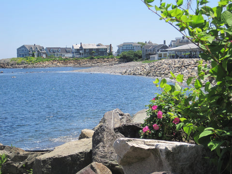 Beautiful homes along the Marginal Way path.