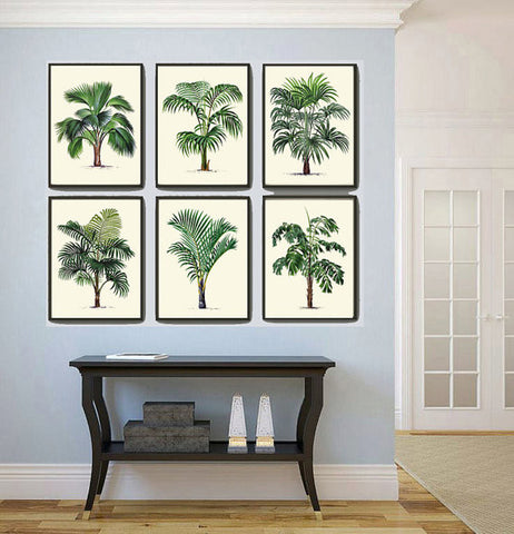 Palm Tree framed prints art