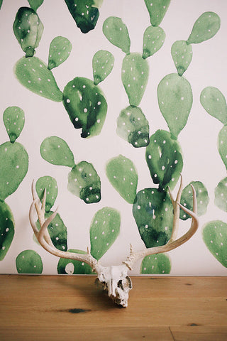 Handpainted cactus wallpaper