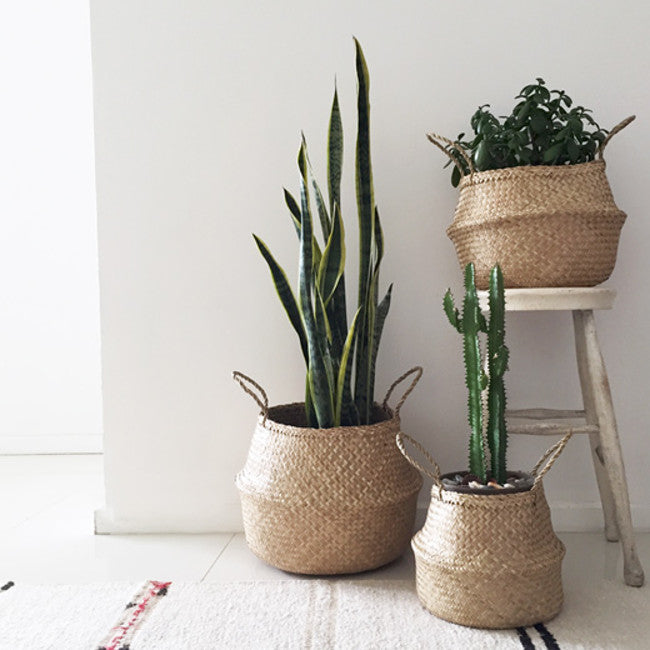 Tropical Handmade Seagrass Baskets