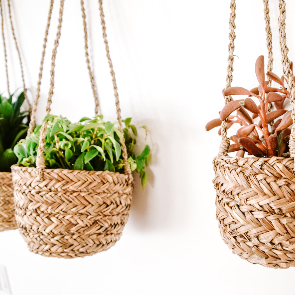 DUFMOD handmade seagrass hanging basket and planter
