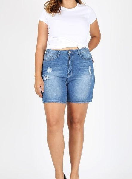 """The Standard"" Curvy Size Shorts"