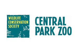 Field Trip to the Central Park Zoo - June 30th!