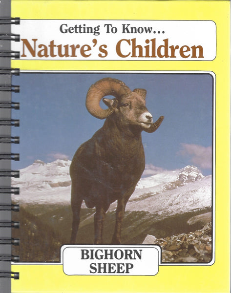 Bighorn Sheep (yellow)