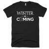 Winter is Coming // Tri-blend