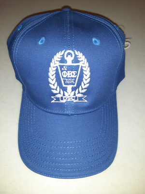 DSC Fitted Cap