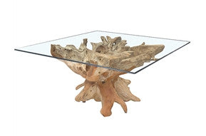 Teak Root Table with square glass top  59x59x30""