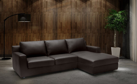 Taylor Leather Sectional Sleeper