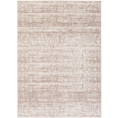 Area Rug 5.3x7.3  in beige and ivory, soft