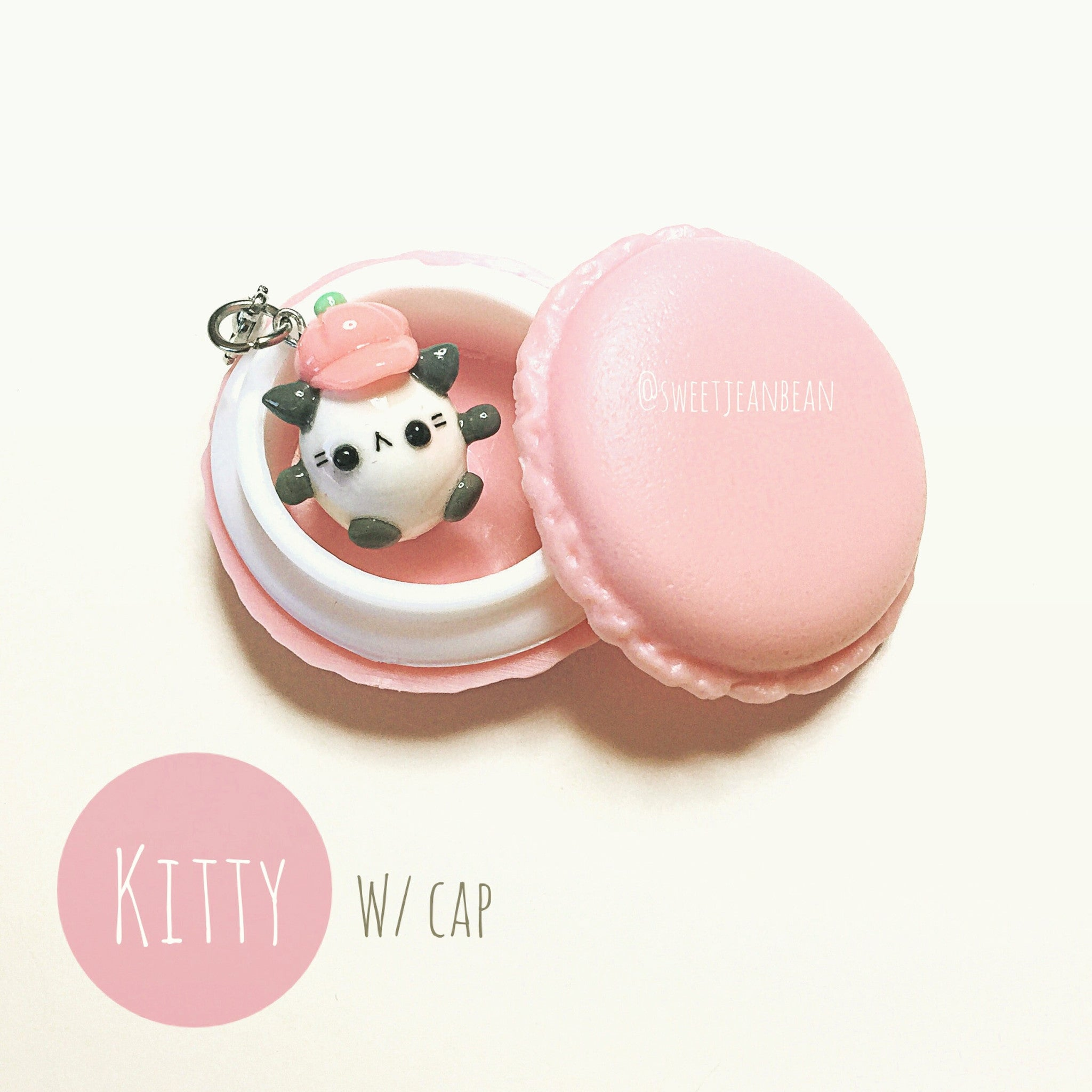 Kitty in Macaron Case