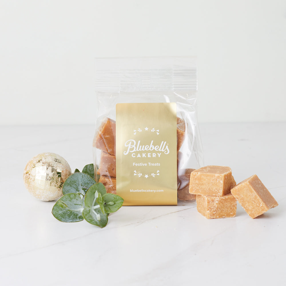 Festive Gift Bag - Orange & Cranberry Fudge
