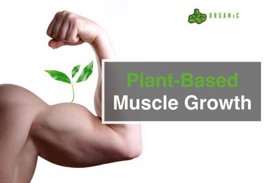 Plant-Based Muscle Growth