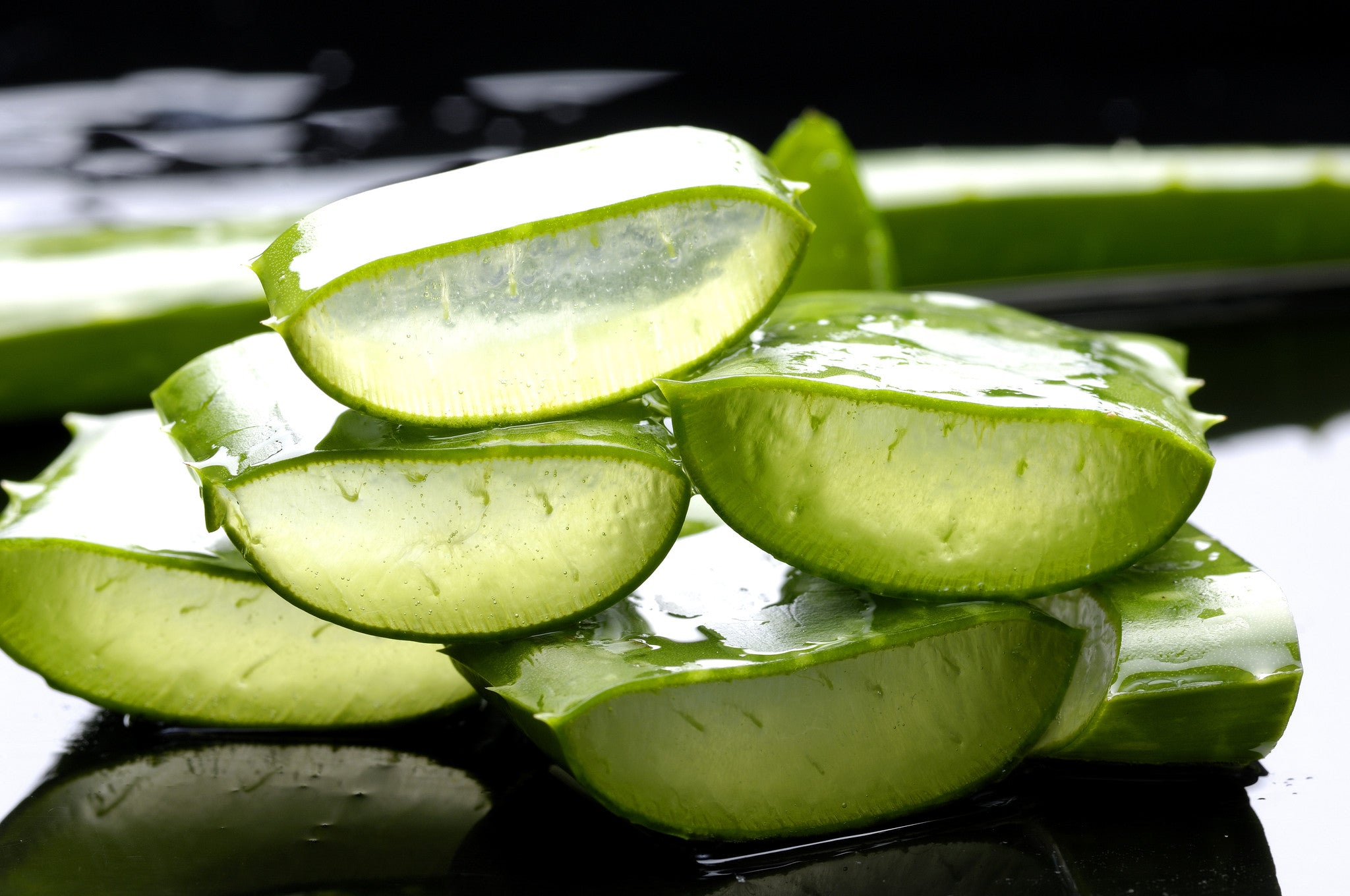 Ingredient Showcase: Aloe Vera