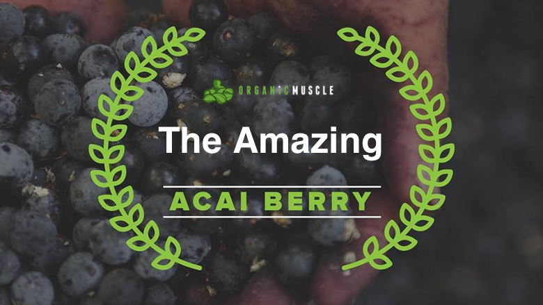 The Amazing Acai Berry