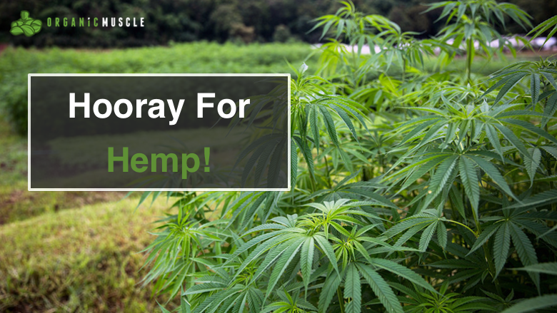 Hooray For Hemp!