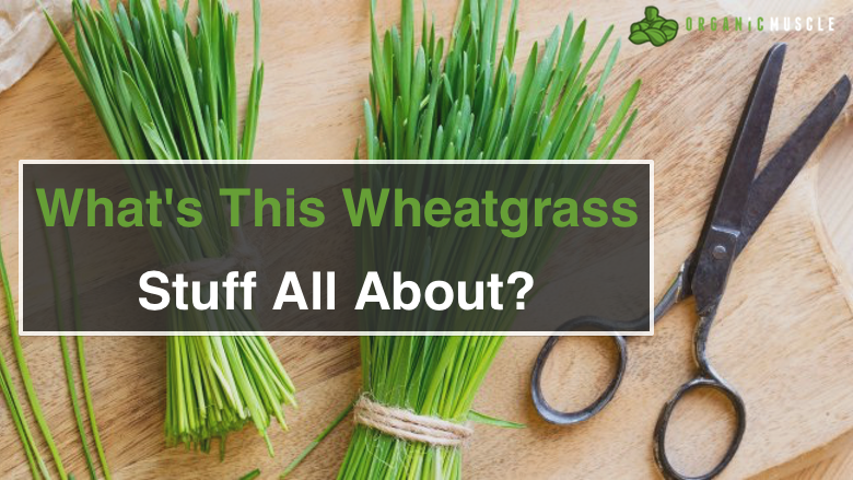 What's This Wheatgrass Stuff All About?