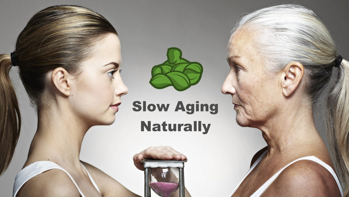 Slow Aging Naturally!