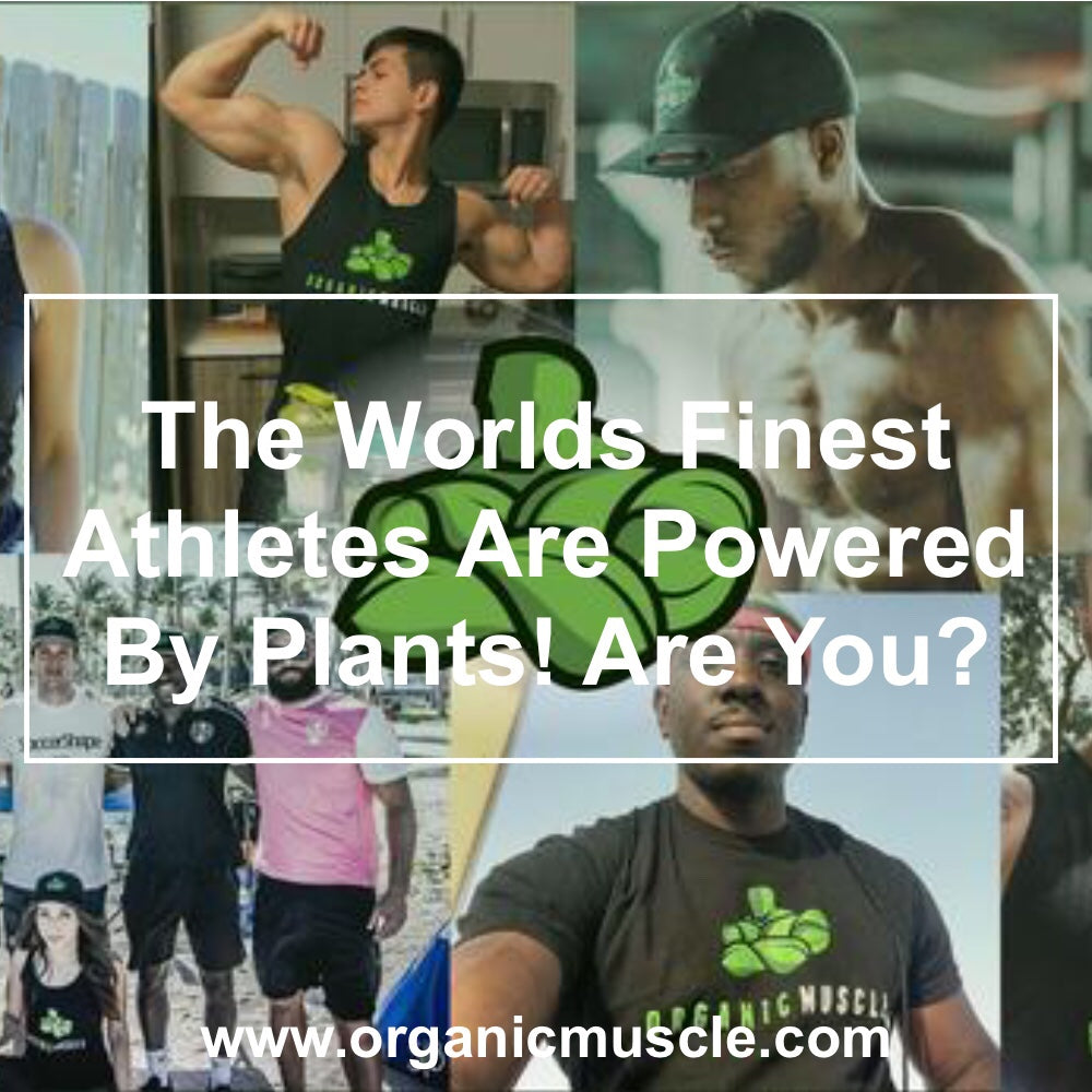 The World's Finest Athletes Are Powered By Plants! Are You?