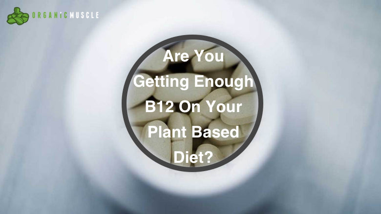 Are You Getting Enough B12 On Your Plant Based Diet?