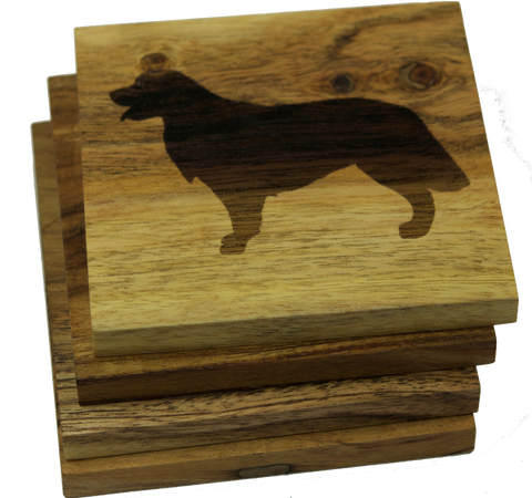 Golden Retriever (Dog) Coasters