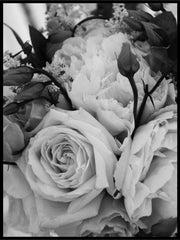 Roses black and white poster - Plakatbar.no