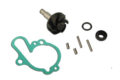 AM6 Water Pump Repair Kit