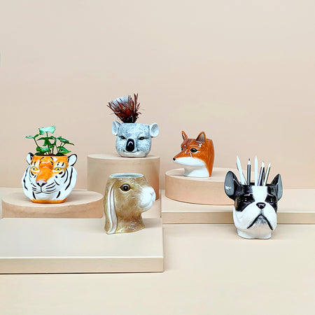 Ceramic Planter Bundle Pack