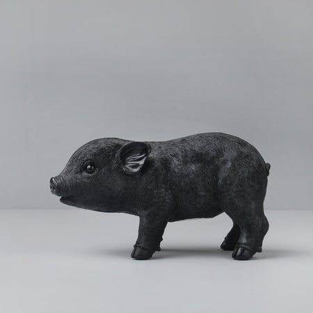 Pig Money Box - Black