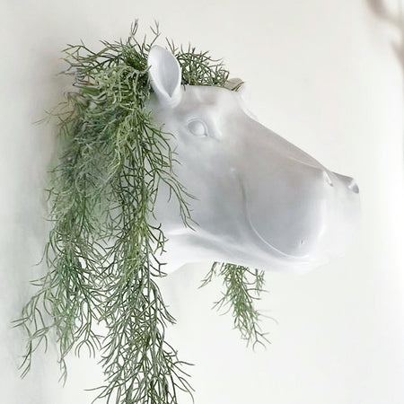 Harry the Hippo whte wall mounted animal head planter. Faux animal head decor for the wall. Quirky and geeky decor