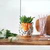 Ceramic Planter -Tiger