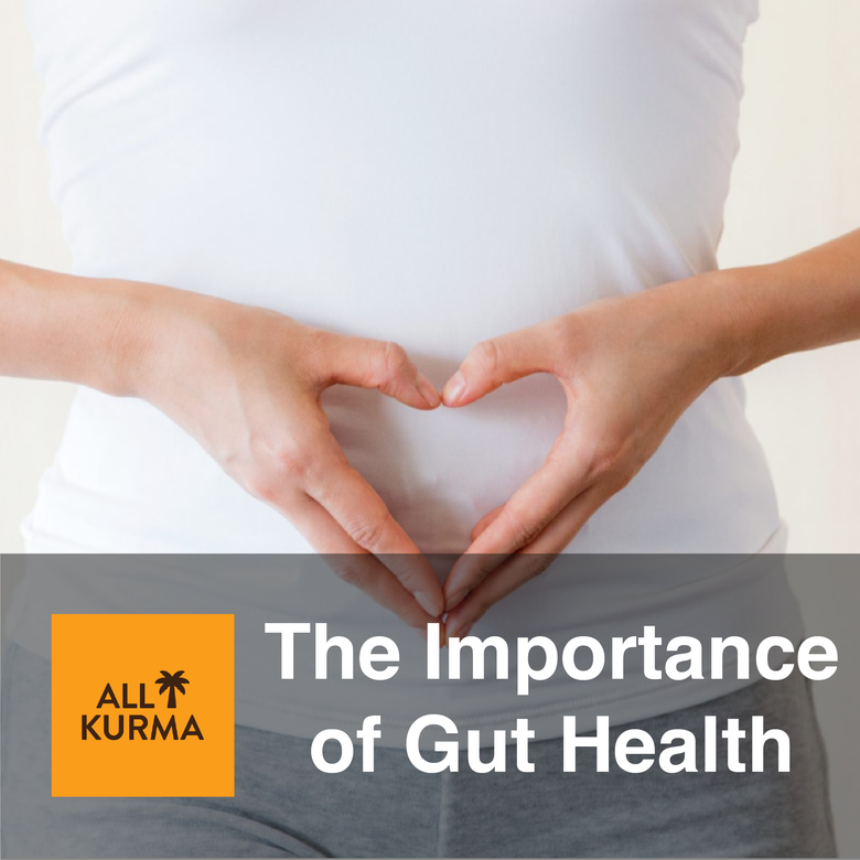 Importance of Gut Health