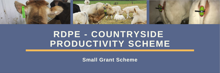 RDPE - Countryside Productivity Scheme - Small Grant Scheme