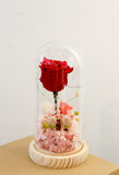 Preserved Flower Dome 保鮮花水晶球 發光 粉紅玫瑰 香港 花店 玫瑰 情人節禮物2018 valentines day gift diy gift  preserved flowers flower shop preserved roses hong kong