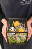 Panda Wonderland  | Preserved Flower Arrangement Opening basket Grand Opening Gift 保鮮花擺設 開張花籃 禮物 型格