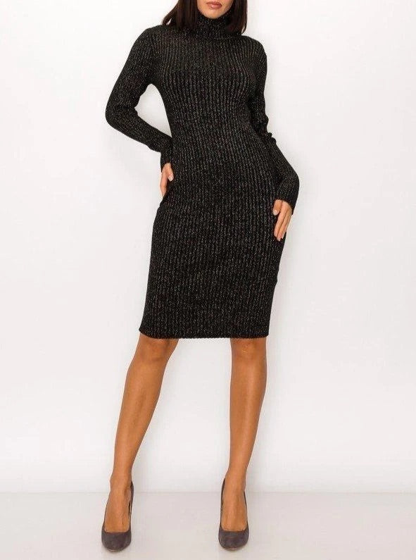 Black Turtle Neck Dress With Silver Sparkles
