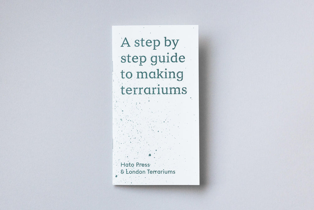 A step by step guide to making terrariums by London Terrariums