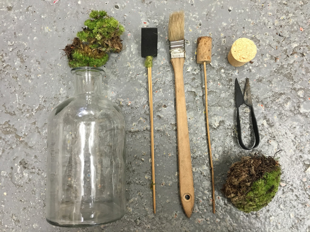 Tinyjohn Terrarium Workshop with London Terrariums at Hato Press: Sunday 22nd January 12.00 — 14.00