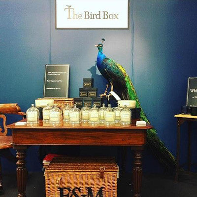 The Bird Box at Top Drawer London