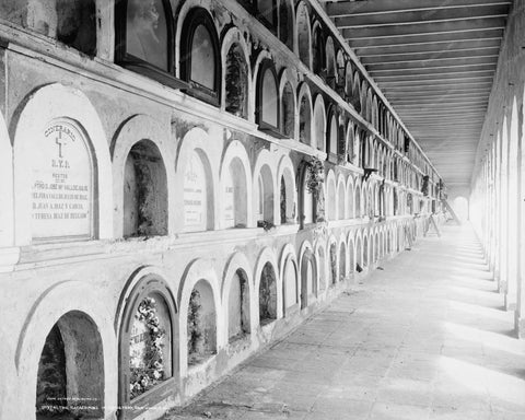 Catacomb Cemetery San Juan Vintage 8x10 Reprint Of Old Photo - Photoseeum
