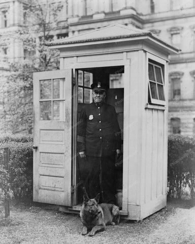 White House Guard Dog 1929 Vintage 8x10 Reprint Of Old Photo