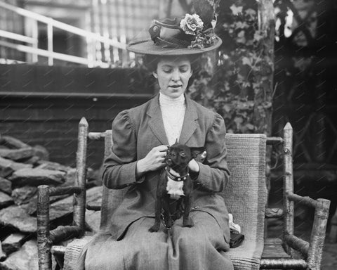 Women With Her Dog Boston Terrier Vintage 8x10 Reprint Of Old Photo