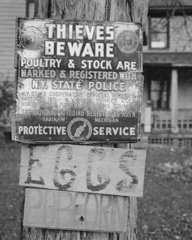 Thieves Beware Poultry Stock Sign Vintage 8x10 Reprint Of Old Photo